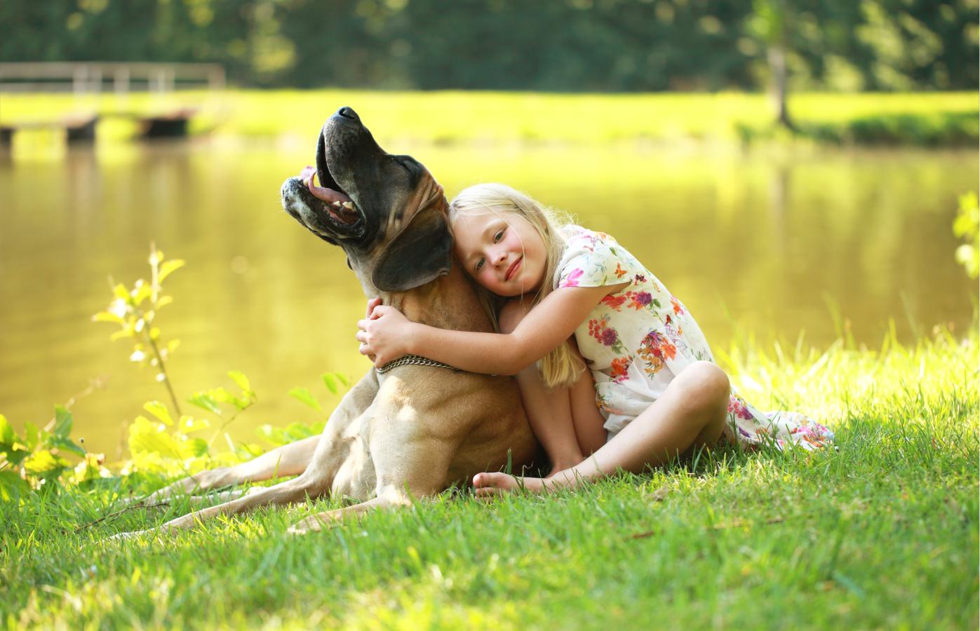 Entenda como tratar verme em cachorro de uma vez por todas!